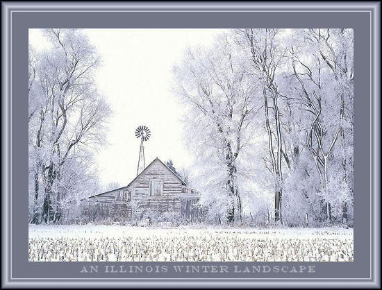 Illinois Winter Landscape